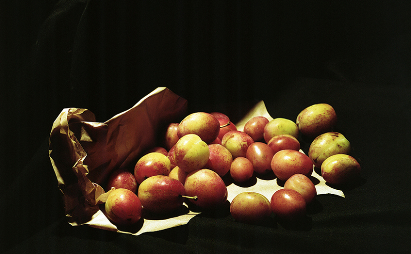 web-sml_still-life-sept-2014_003rplums